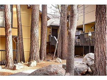 41935 Switzerland Drive #61, Big Bear Lake, CA