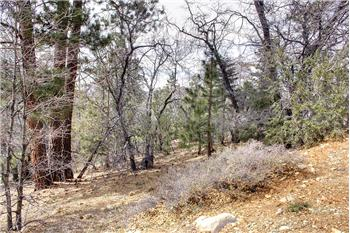 1436 Klamath, Big Bear Lake, CA