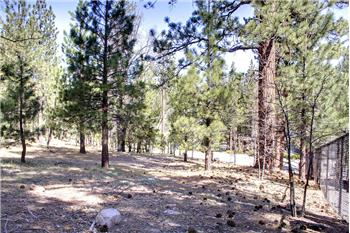 42277 Evergreen Drive, Big Bear Lake, CA