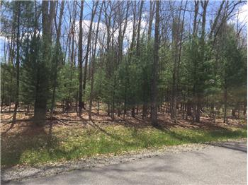 Lot 18, William Place, Daniels, WV