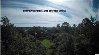 Lot B Hook Drive, Pawleys Island, SC