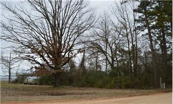 Unrestricted Land 1.3 Acres East on Craig Road, Broken Bow, OK